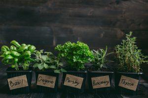 Herb Benefits A Better Choice